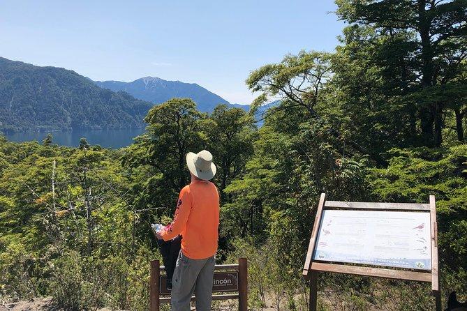 Hiking Vicente Perez Rosales National Park -15km