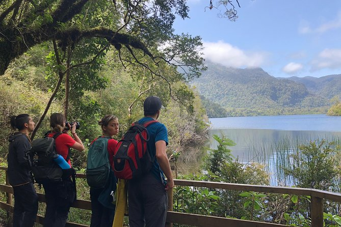 Hiking Parque Nacional Alerce Andino 8-19km