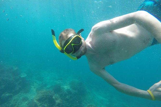 From Khao Lak : Phi Phi Snorkeling Day Trip by Speedboat Including Buffet Lunch photo 7