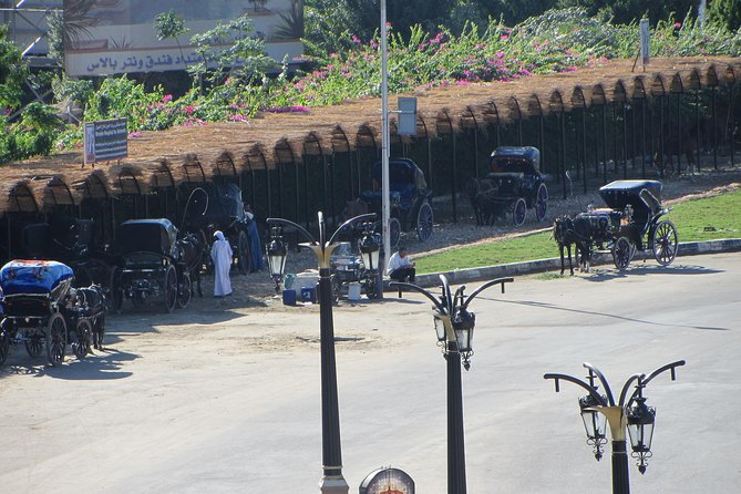 Luxor City Tour with traditional Horse-drawn Carriage