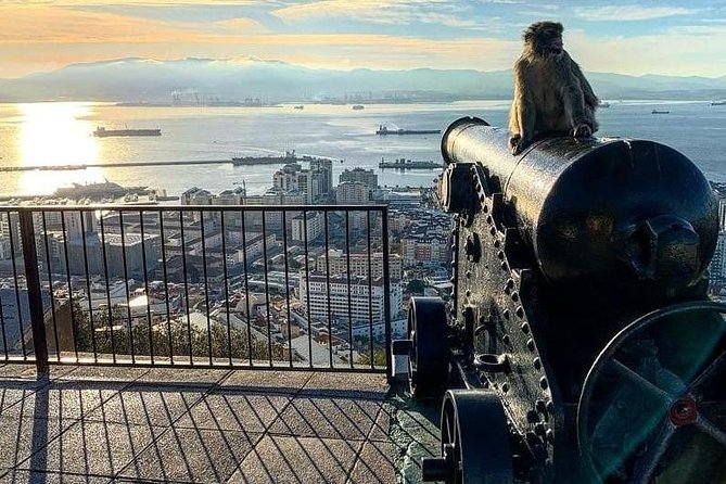 Gibraltar Sightseeing : Extended Rock Tour / Shore Excursion (Private)