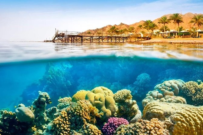 Desert Safari In Dahab & Snorkeling At Blue Hole Spot From Sharm photo 7