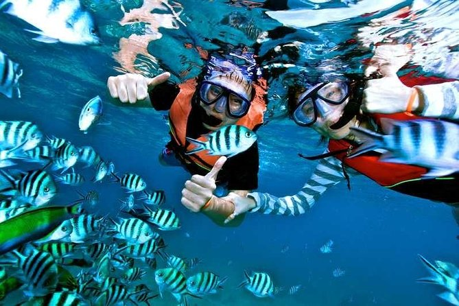 Explore Egypt in 7 Days \ 6 Nights Beach and History