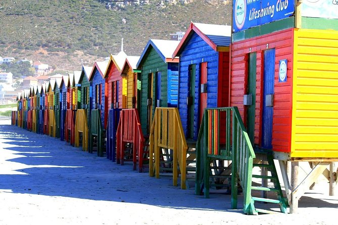 Cape of Good Hope Sightseeing and Penguins Full Day Tour From Cape Town photo 3