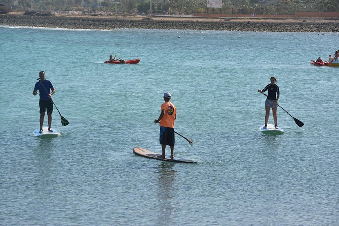 2-Hour Beginners Stand Up Paddle Course in Caleta de Fuste photo 4
