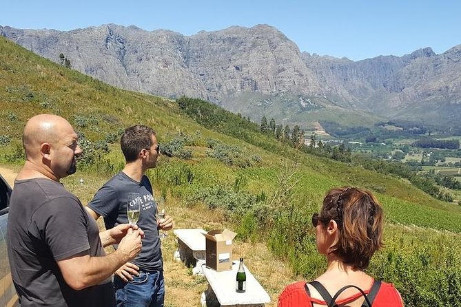 Venture with a Winemaker