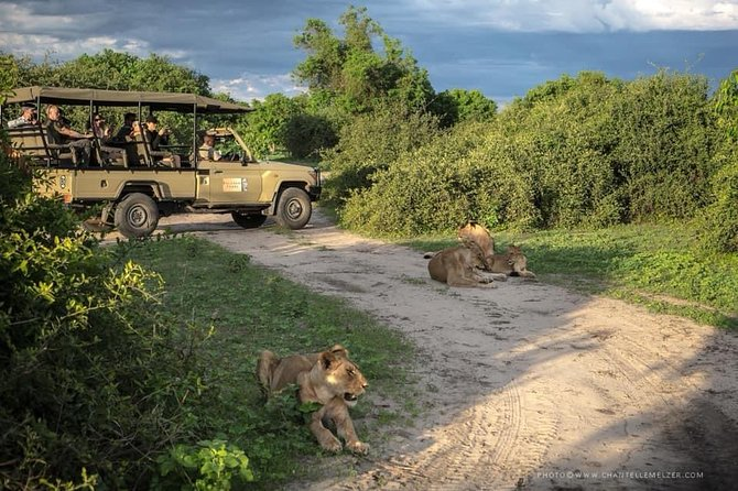 Chobe Full Day Trip In Botswana