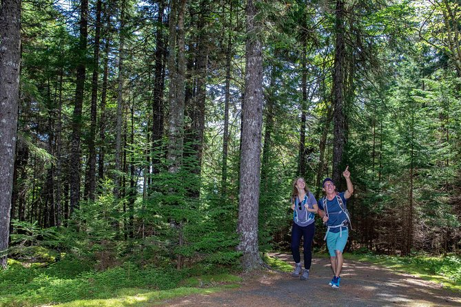 St Martins Fundy Trail