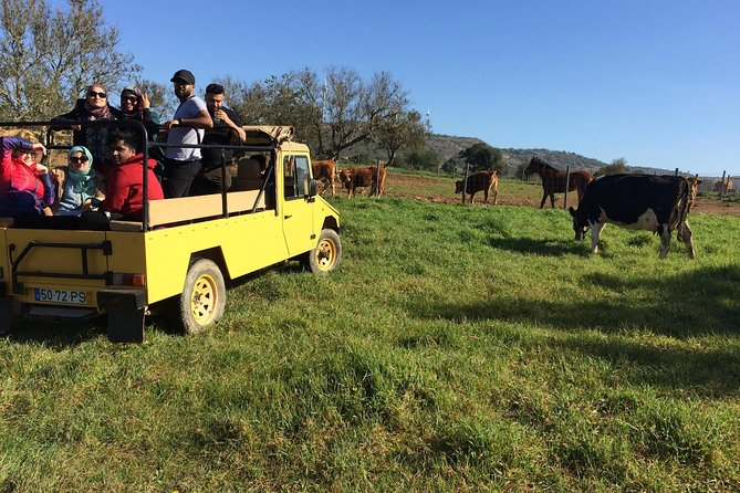 Algarve Jeep Safari - Day Trip with Lunch Included photo 9