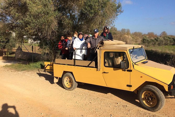 Algarve Jeep Safari - Day Trip with Lunch Included photo 6