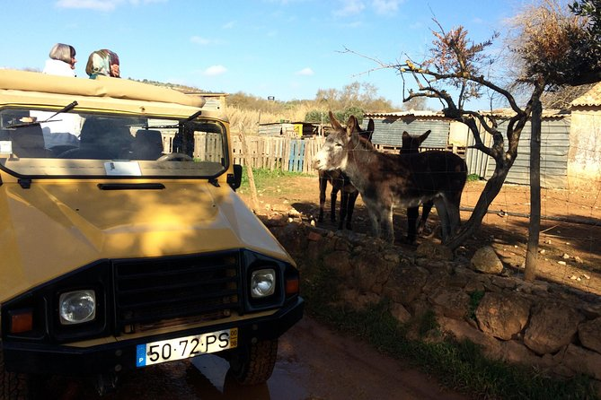 Algarve Jeep Safari - Day Trip with Lunch Included photo 17