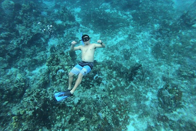 Snorkeling in Cozumel from Cancun