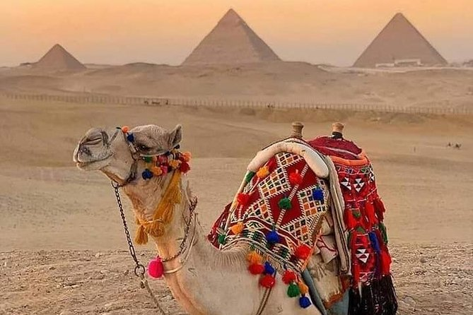 Tour Around The Pyramids Riding a Horse or Camel photo 8