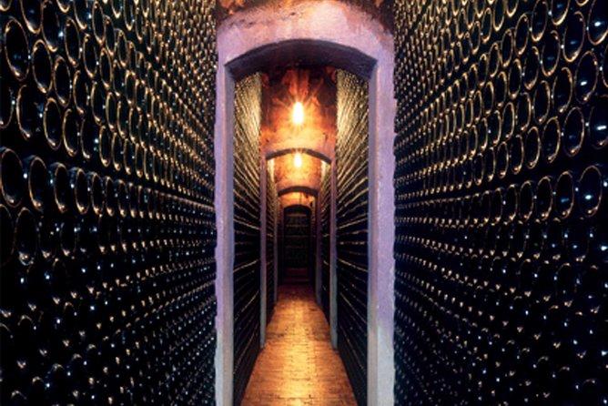 Visit and wine tasting at BODEGA PIRINEOS