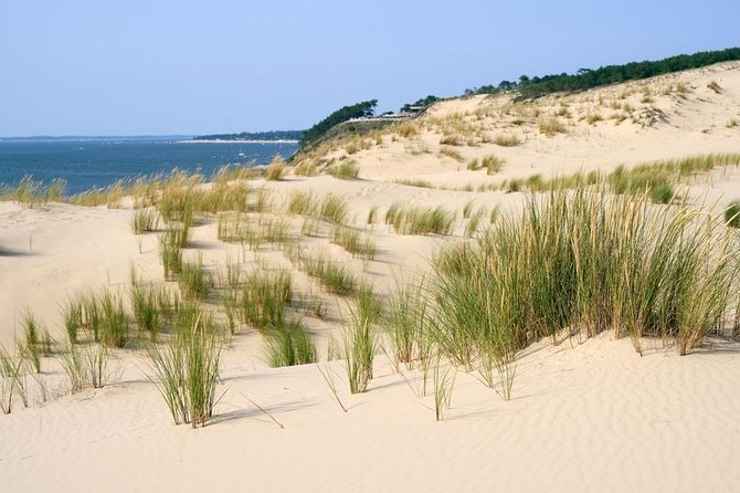 Dune du Pilat and Oysters Tasting in only 1 hour away from Bordeaux ! What else?