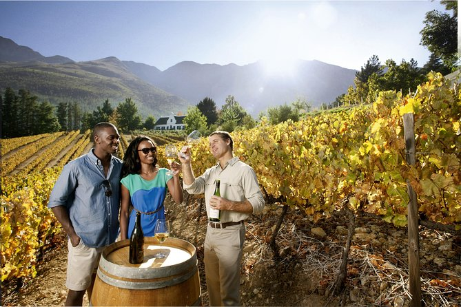 Private Cape of Good Hope Winelands tour