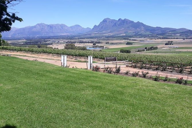 Full day wine tasting in private car, Stellenbosch, Franschhoek and Paarl
