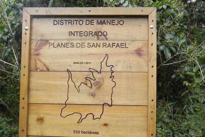 Municipality of Sanctuary and San Rafael plans