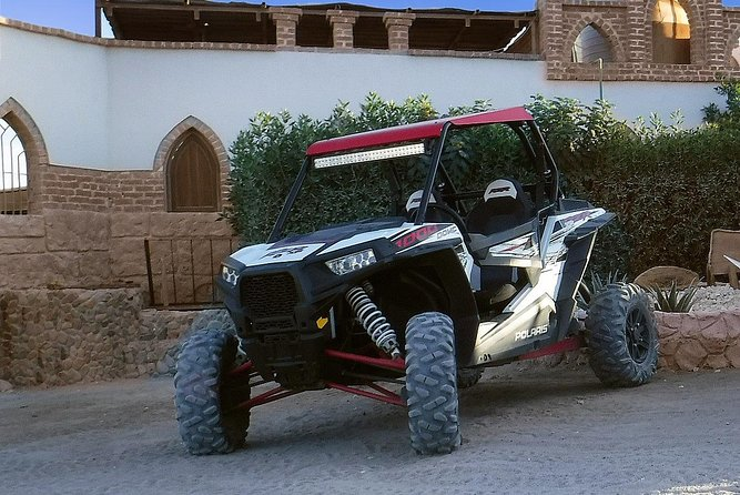 Polaris Desert Buggy with Camel Ride (3 Hours) - Hurghada photo 12