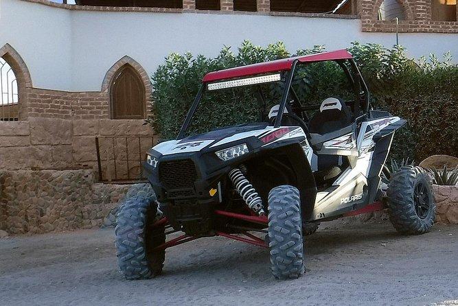 Sahara Full Day By Polaris Desert Buggy & Dinner & Camel Ride - Hurgahda