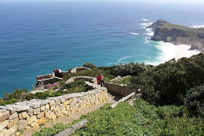 Cape of Good Hope Sightseeing and Penguins Full Day Tour From Cape Town photo 27