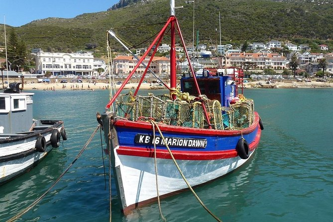 Cape of Good Hope Sightseeing and Penguins Full Day Tour From Cape Town photo 20