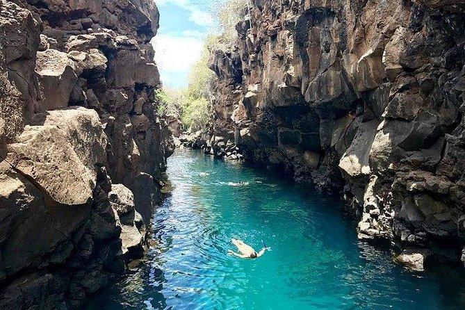 "4 Days Galapagos Classic - "" Las Grietas & Tortuga Bay """