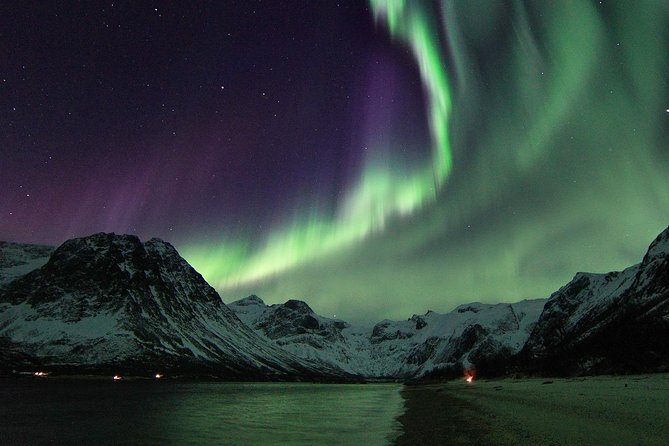 Northern Lights by Minibus. Photos Under the Lights included. Tromso