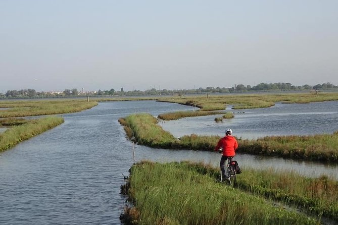 Bike, boat and taste between Sile Park and Venice Lagoon