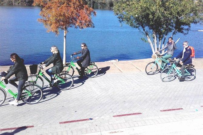 Bike tour through the parks of Seville