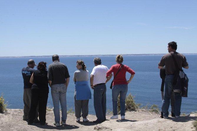 Mini-Trekking with sea lions. Punta Loma Protected Natural Area.