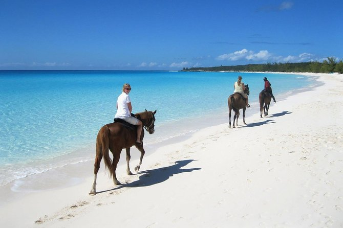 Puerto Plata: Sunset Beach Horseback Riding photo 5