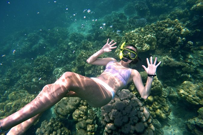 Small-Group Phi Phi Island Snorkeling Trip by Speedboat