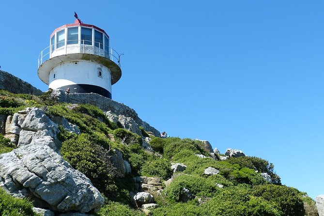 Cape of Good Hope Sightseeing and Penguins Full Day Tour From Cape Town photo 21