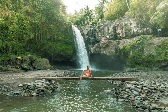 Ubud Bali Full Day Private Trip - Top Travelers' Choice - The Best of Ubud