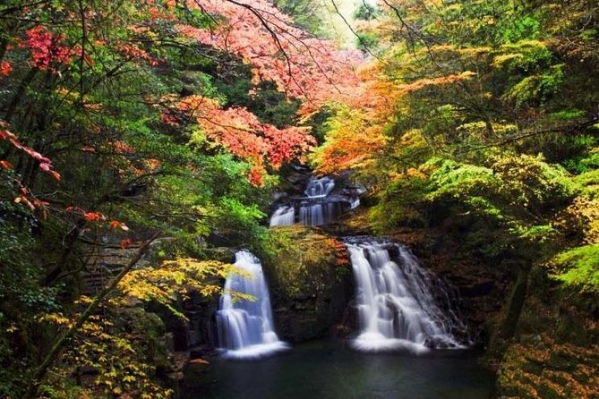 Discover Akame, 48 beautiful waterfalls in a 2 hour walk in the green.