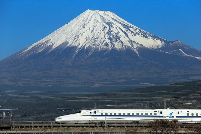 3-Day Kyoto and Nara Rail Tour by Bullet Train from Tokyo