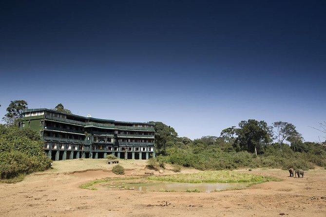 2 Days Mount Kenya National Park safari