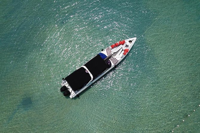 Private Phi Phi Islands Sunrise Tour Speedboat Charter photo 4
