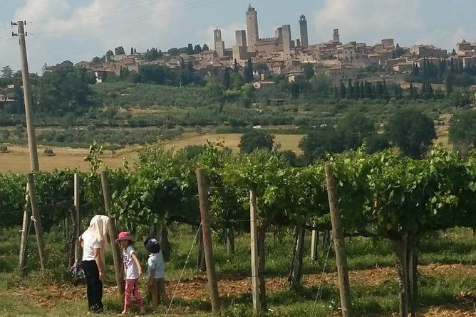 Montalcino and Pienza Tuscany Wine&Cheese Fullday from Florence photo 3