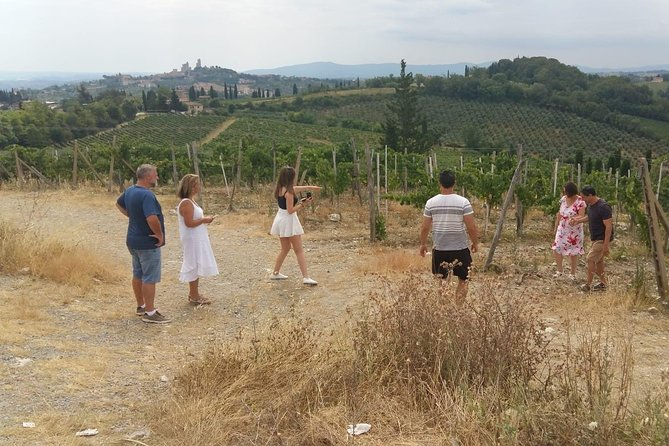 Montalcino and Pienza Tuscany Wine&Cheese Fullday from Florence photo 16