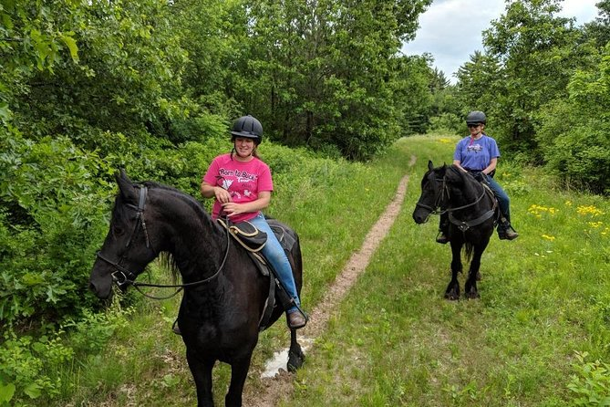 Friesian Herd Tours, Workshops, Classes and Retreats in the Kettle Moraine area. photo 9