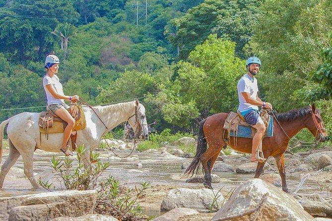 Sea Safari and Horse Ride