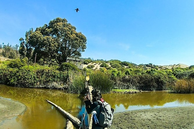 Connection costa: Wetland of Mantagua and Valparaíso
