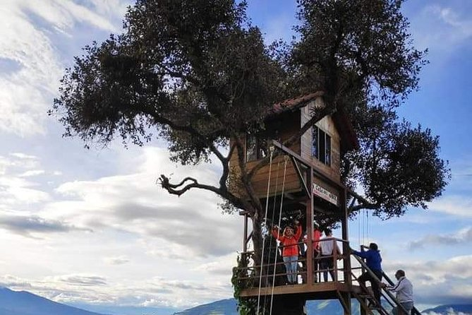 The Tree House - Swing of the End of the World and more ... Private Tours For 3 pax