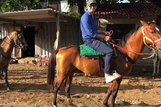 Horseback Riding - Ecological Route