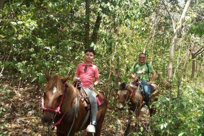 Horseback Riding - Extreme Route