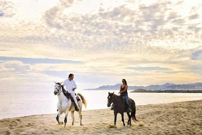Horseback Riding on The Beach and Through The Desert!
