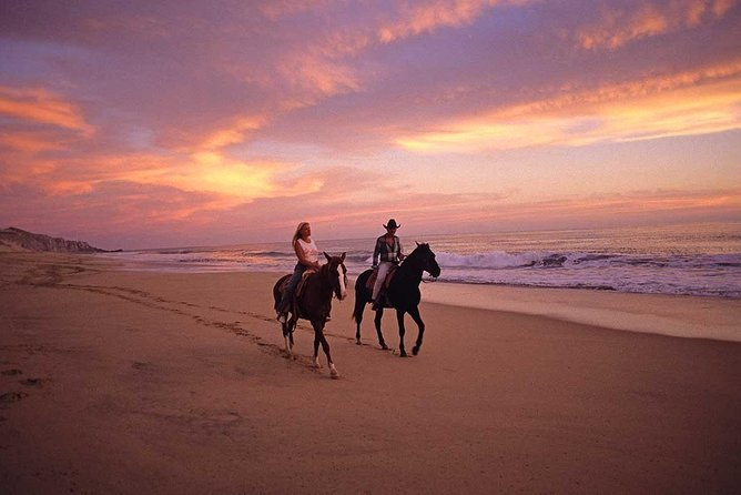 Private Sunset Beach & Desert Horseback Tour