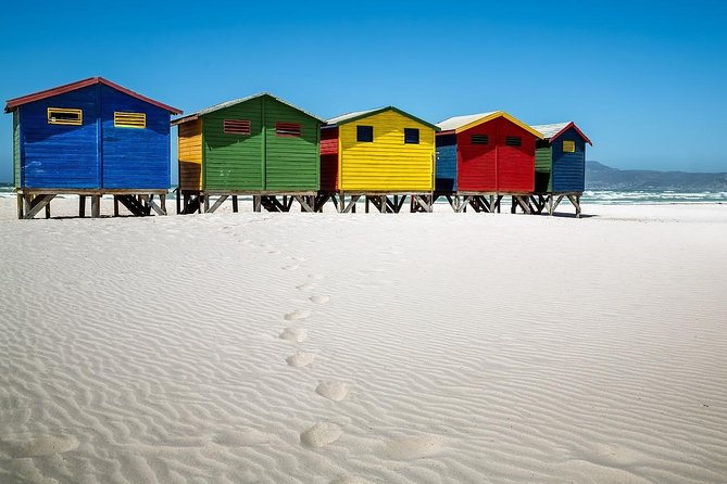 Cape of Good Hope Sightseeing and Penguins Full Day Tour From Cape Town photo 24